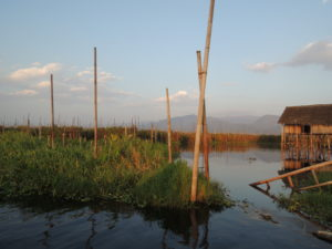 We visited among others the Inle Lake district where the issue of agriculture and leaching of nutrients to the shallow lake is in focus.
